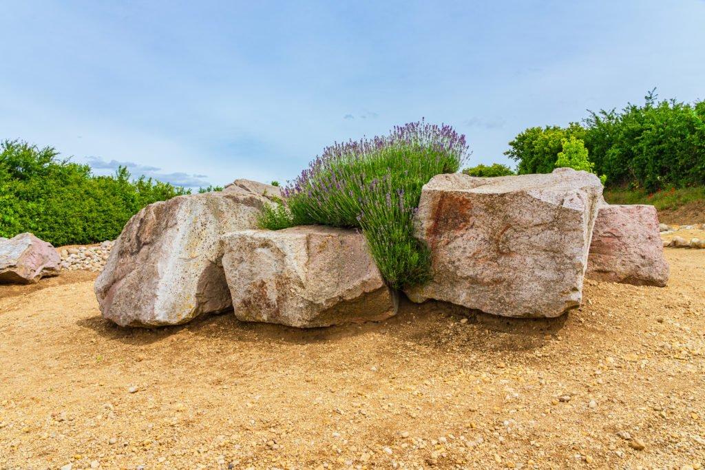 Strandpfad der Sinne Eckelsheim Steinformationen