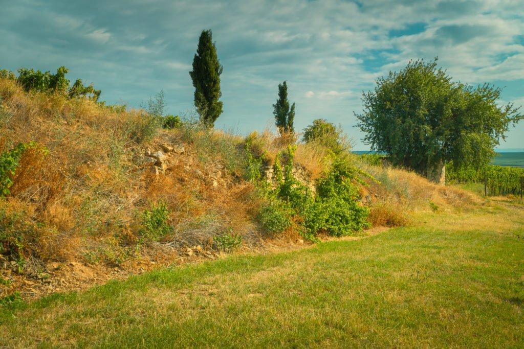 steinmauern-unterschlupf-tiere