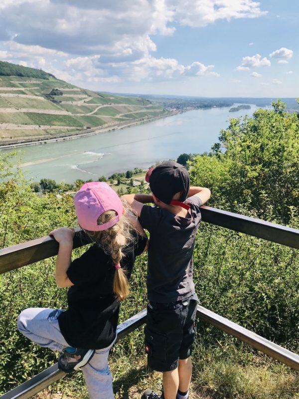Aussicht auf den Rhein bei Bingen
