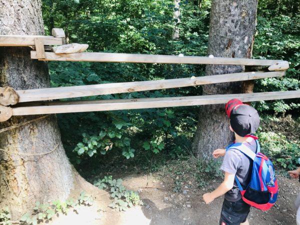 Kugelbahn auf dem Walderlebnispfad Binger Wald