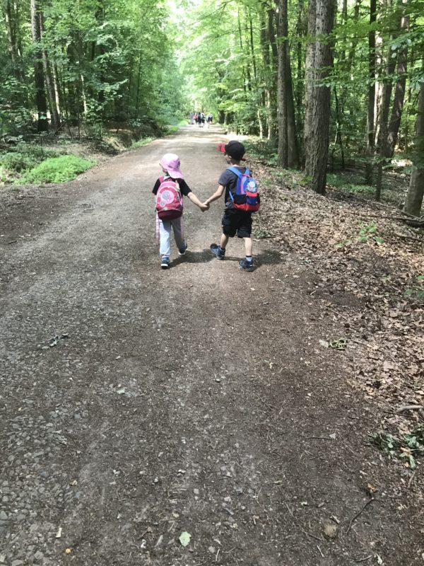 kinder laufen auf dem walderlebnispfad