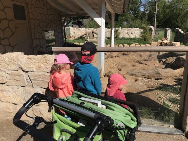 Familienausflug im Wildpark