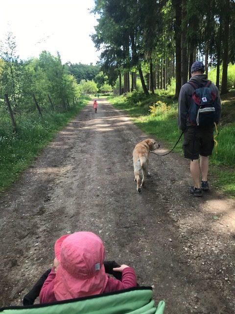 Im Hochwildschutzpark Rheinböllen sind alle willkommen - auch dein Hund!