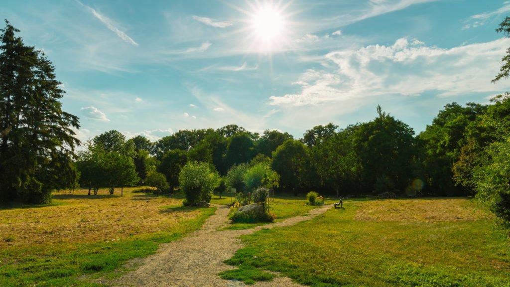 pfrimmgarten-monsheim-mehrgenerationenpark