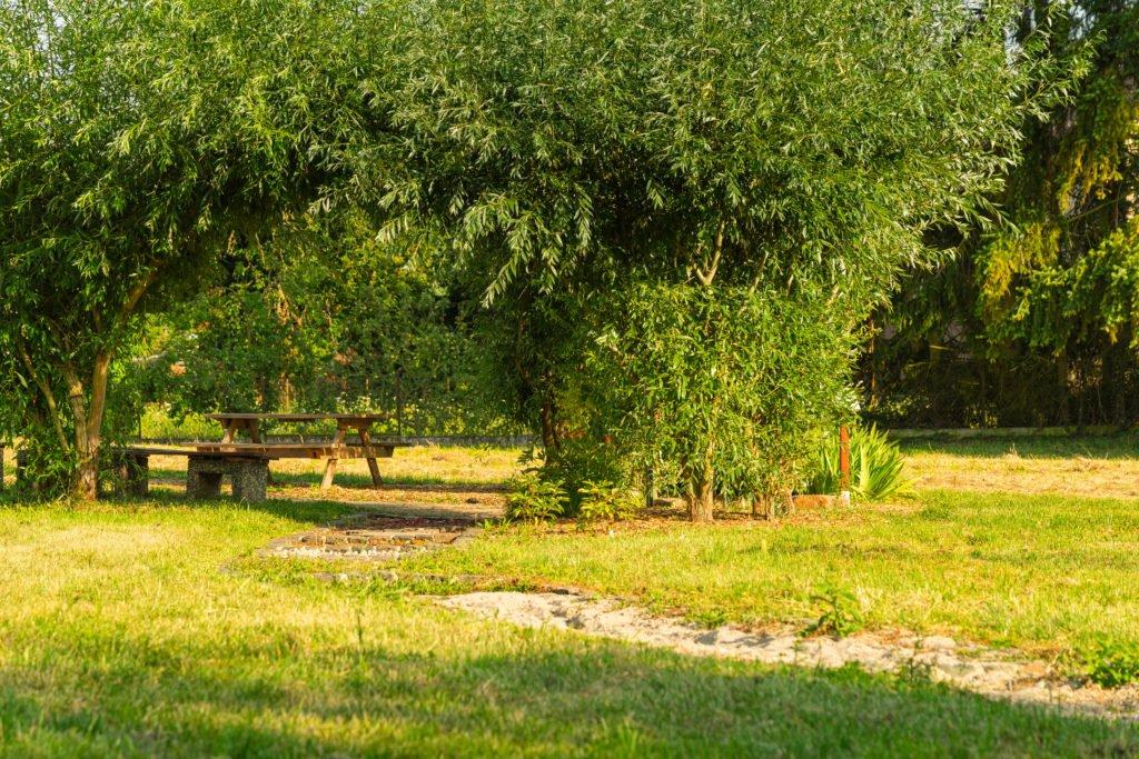 picknickplatz-mehrgenerationenpark-monsheim