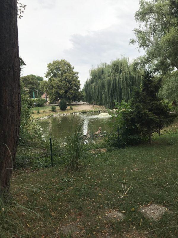 See im vogelpark bobenheim-roxheim