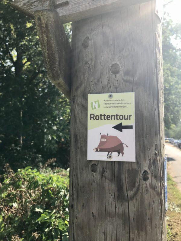 symbol wildschwein rottentour