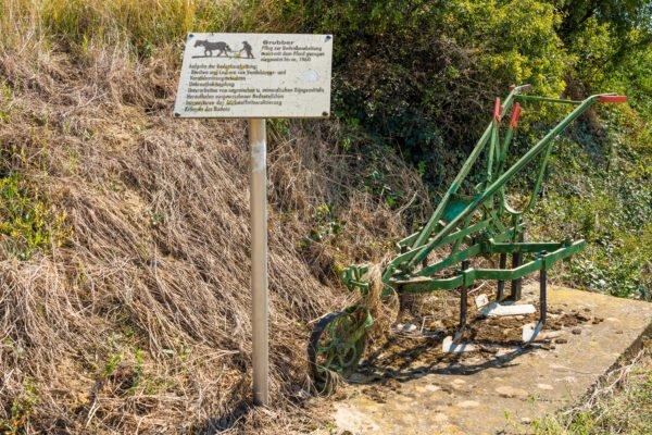 alte-landwirtschaftliche-geräte-bechtheim