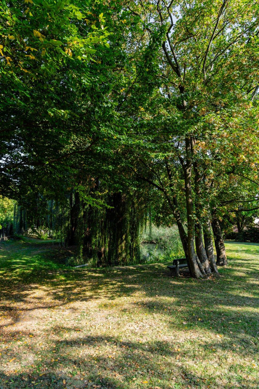 lambertuspark-bechtheim