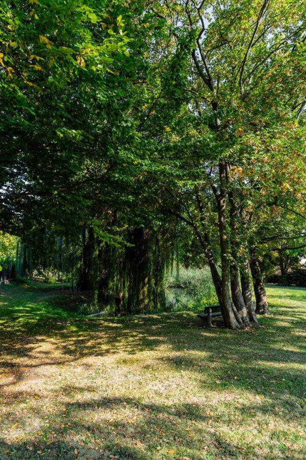lambertuspark bechtheim