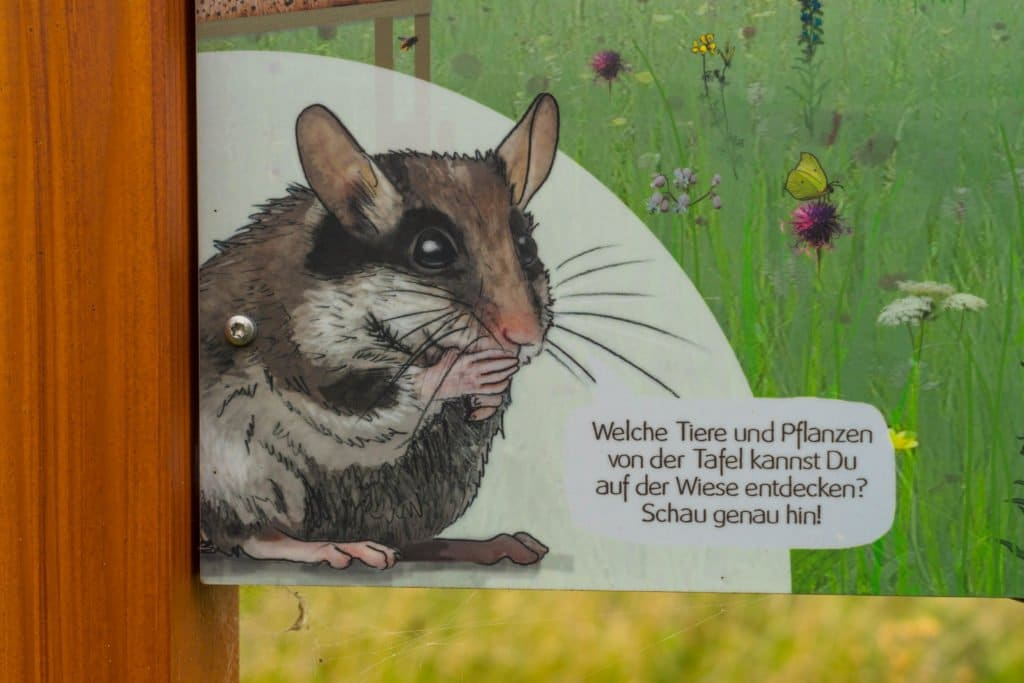 Bea Bilch Entdeckerpfad Flomborn