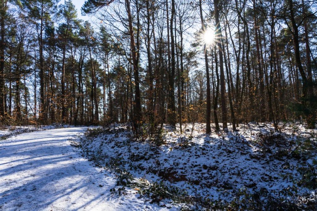 dachsi-wanderweg-winter