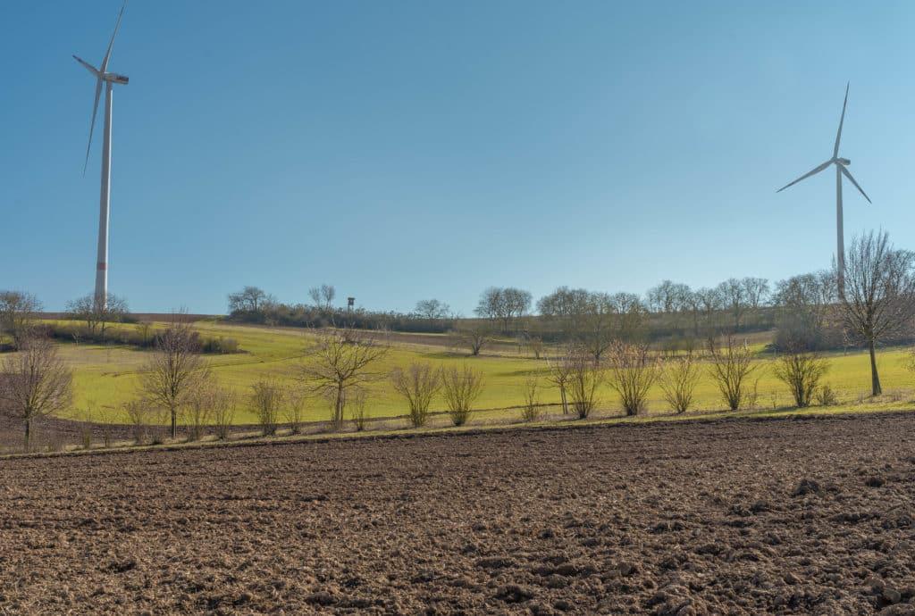 windraeder-felder-wachenheim