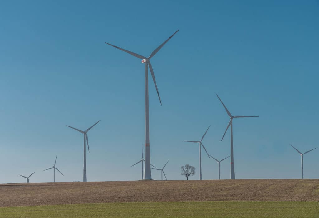 windraeder-wind-rebenweg-wachenheim