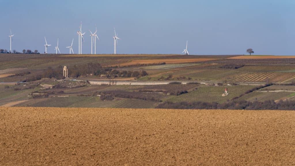 ausblicke-wind-rebenweg-zellertal